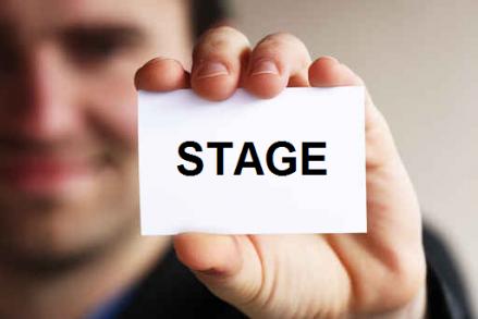 Offres De Stage à Destination Des étudiants En Licence
