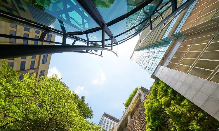 Émetteurs et investisseurs de plus en plus intéressés par la finance verte