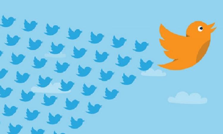 Les universitaires à suivre sur Twitter
