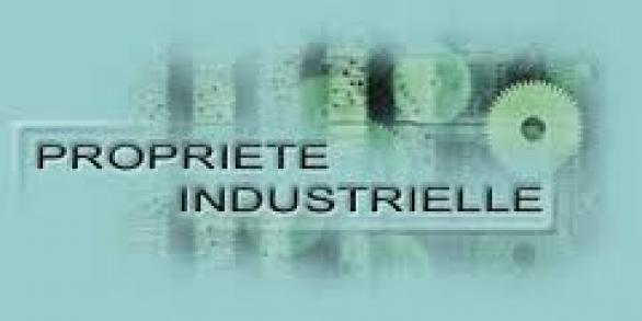 Conseil en propriété industrielle