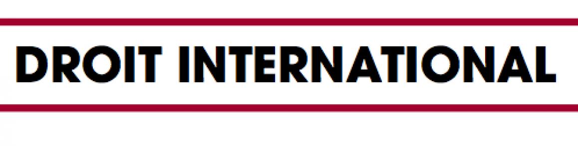 Pourquoi faire un Master en droit international ?