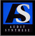 AUDIT SYNTHESE