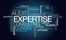 specialised-master-in-auditing-and-consulting